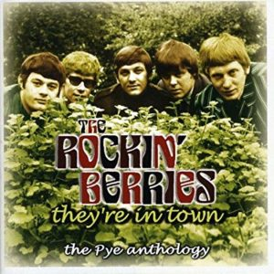 rockin-berries-theyre